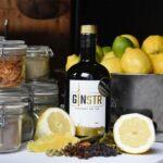 GINSTR Gin