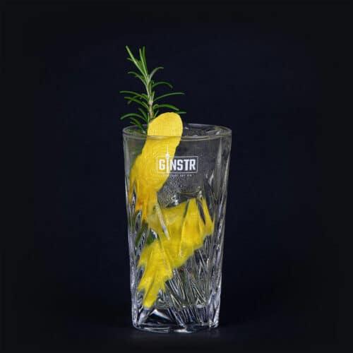 GINSTR Tonic